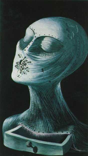 Сальвадор Дали. Рисунок. Античное лицо.