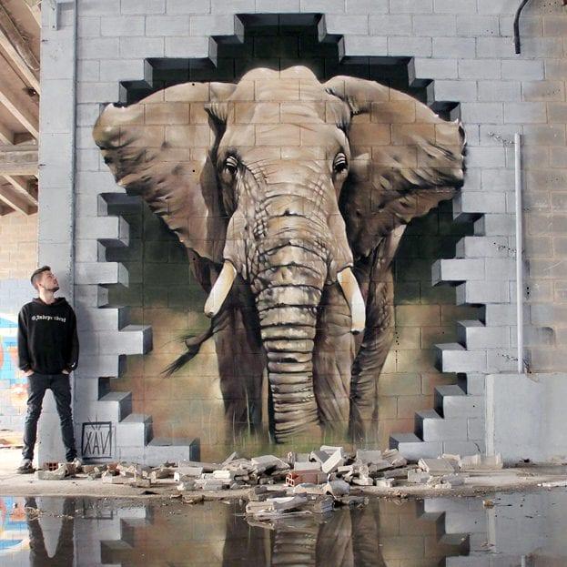На фото мурал «Elephant» нарисованный в Андерлехте. Его нарисовал испанский стрит-арт художник XAV.