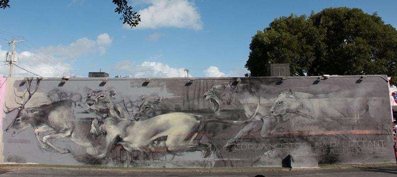 На фото мурал нарисованный в Майами. Его нарисовала  южноафриканская стрит-арт художница Faith47.