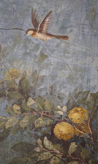Фрагмент фрески изображающей сад в триклинии (столовой), в вилле Ливии, жены императора Августа, в Риме.